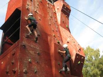 Cubs Climbing